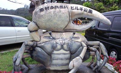 慶佐次湾のヒルギ林1